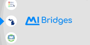 """Michigan Bridges Login"""