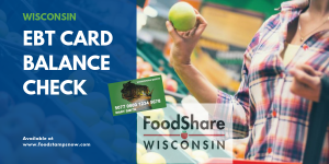 """Wisconsin EBT Card Balance Check"""