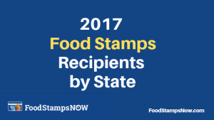 """food stamp statistics 2017"""