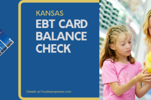 """Check Your Kansas EBT Card Balance online"""