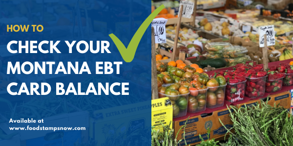 How to check Montana EBT Card Balance