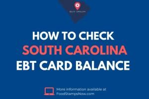 South Carolina EBT Card Balance Check