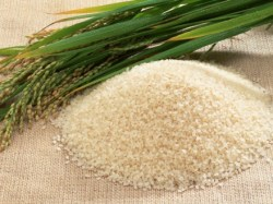 ricepost