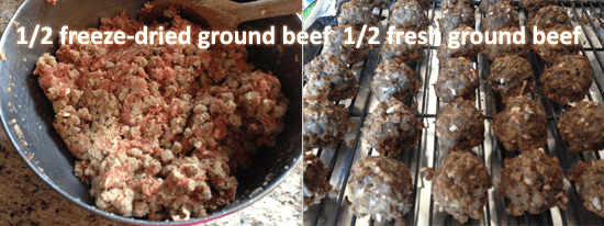 freeze-dried-beef