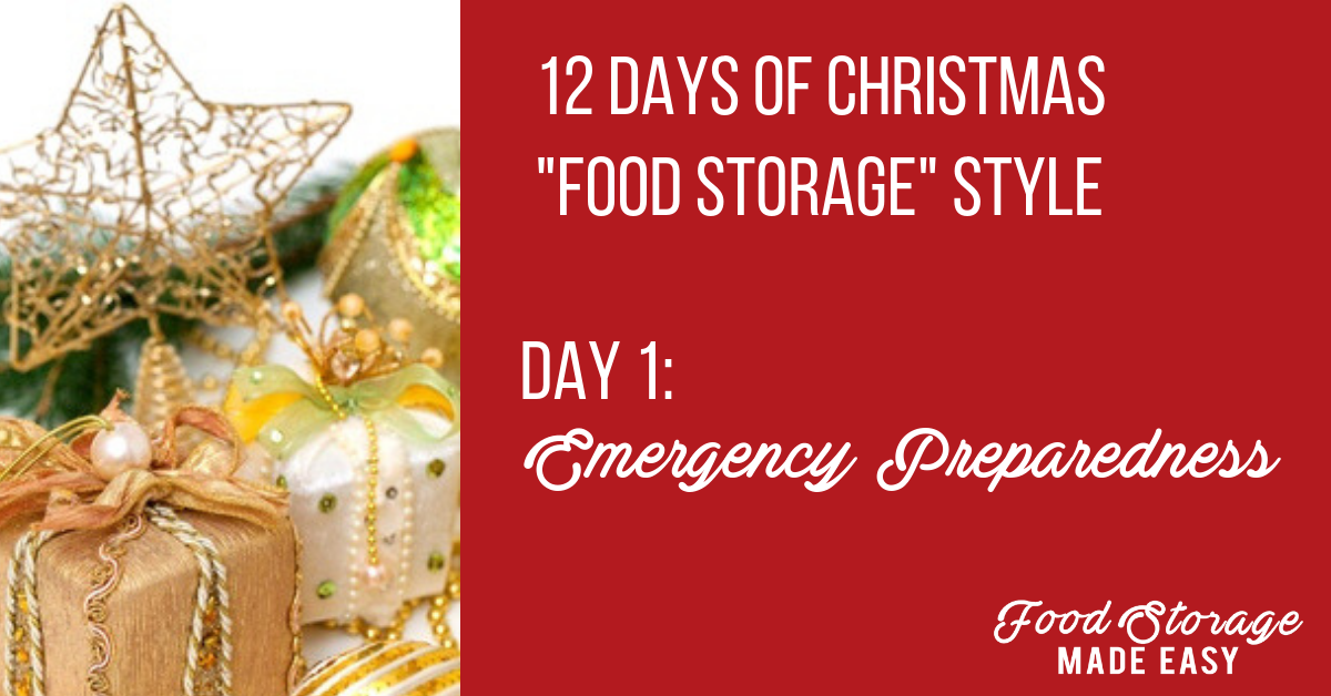 Day 1: Emergency Preparedness Gift Ideas