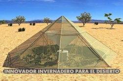 Innovador-invernadero-en-el-desierto