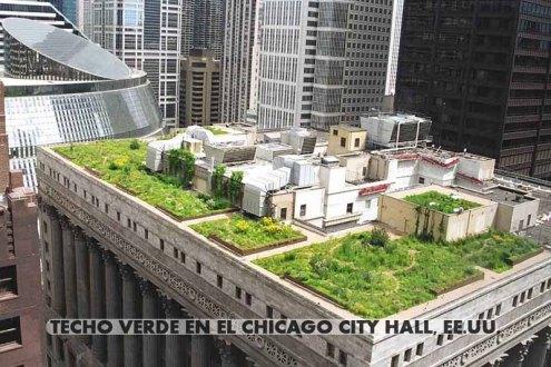 Techo-verde-en-el-Chicago-City-Hall-EE.UU_.