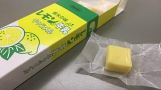 佐野SAで発見した栃木の味レモン牛乳キャラメル!