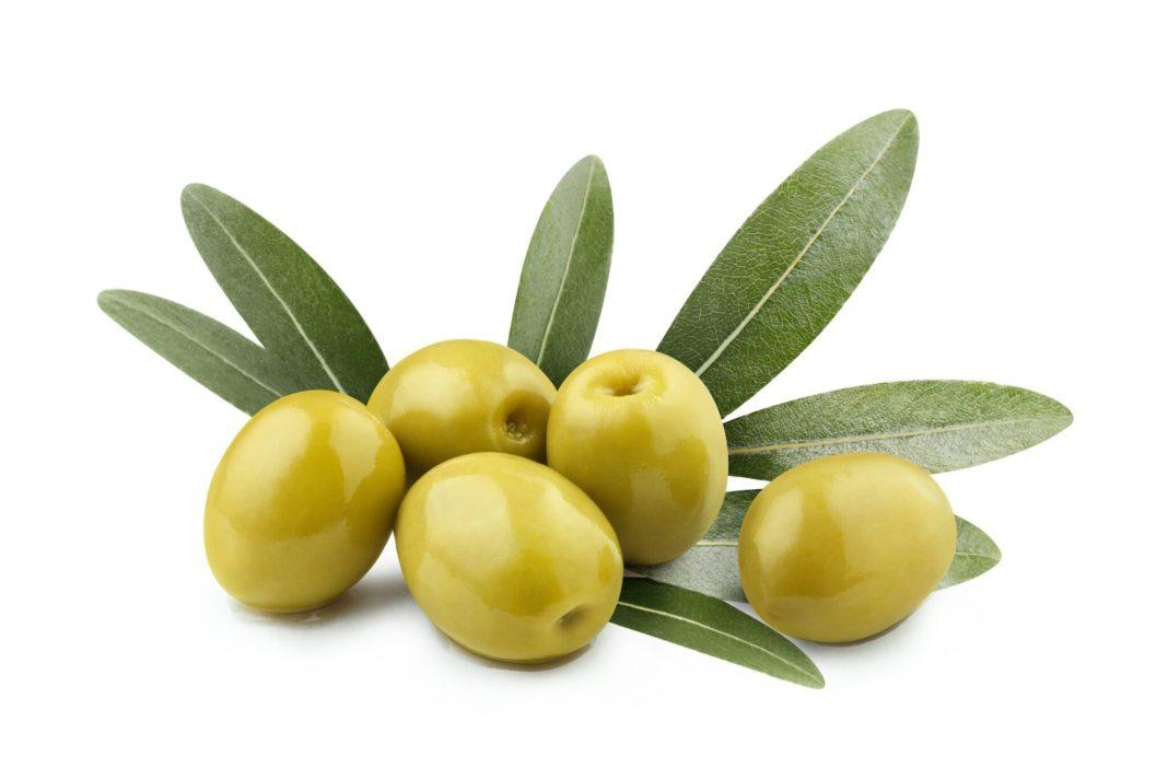 Olive fruit health benefits