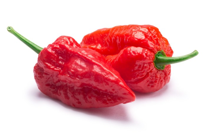 How hot is ghost pepper