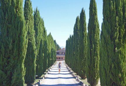 Maak een road trip door de Chianti wijnstreek in Toscane
