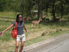 Kruger Park Lodge, Mpumalanga, South Africa