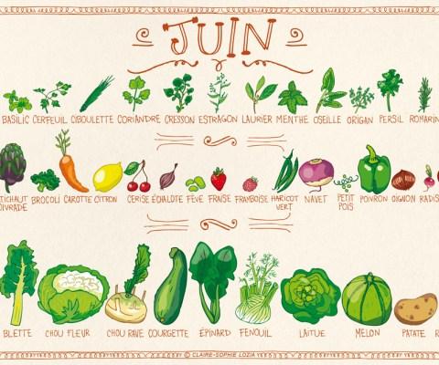 Légumes et fruits de saison JUIN