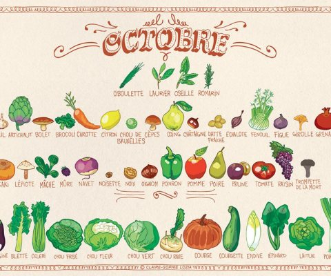 Légumes et fruits de saison OCTOBRE