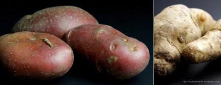 Rose potatoes and topinambour