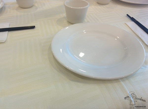China Garden Plate and teacup