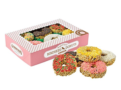 Birdseed Donuts Seed Cakes, Set of 6