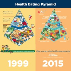 New Food Pyramid Diagram 2000 S10 Radio Wiring The Healthy  Not Set In Stone Catherine
