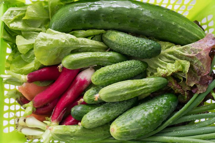 7 Vegetables Cucumbers