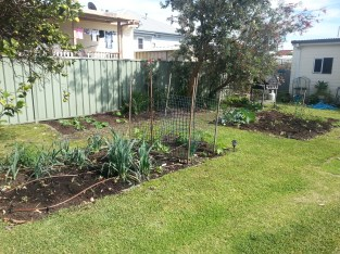 My gardens at the start of spring planting