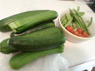 Freshly picked zucchini, cherry tomatoes, snow peas and beans