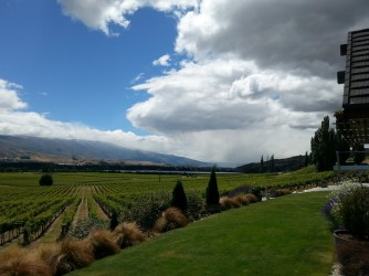 Spectacular view from Bannock Brae Wines