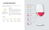 Useful summary of the key characteristics in any glass of wine