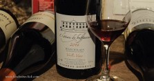 A classic Beaujolais from the Pierres Dorées