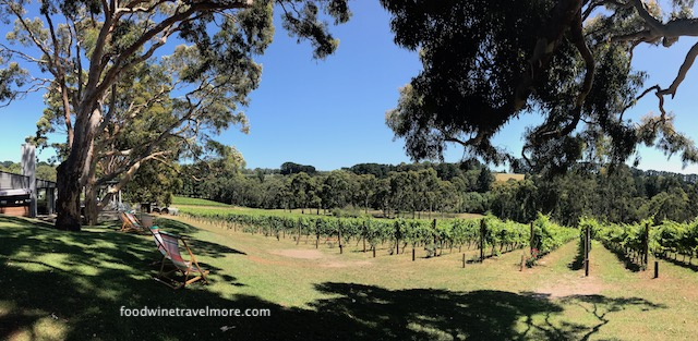 Polperro vineyard mornington peninsula winery