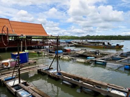 Stop 4: Koh Panyi Muslim Village - originally a fishing village. Now survives on tourism.