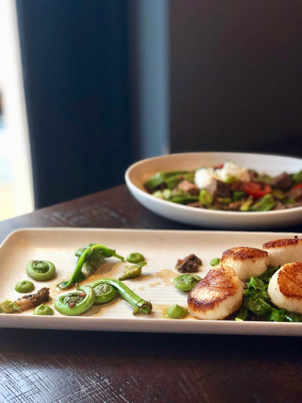 Grilled scallops and fiddleheads for spring | The Cassidy Bar + Kitchen | NJ Restaurant Reviews | foodwithaview.com