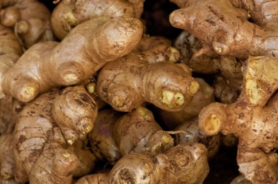 Ginger rhizomes in a full view.