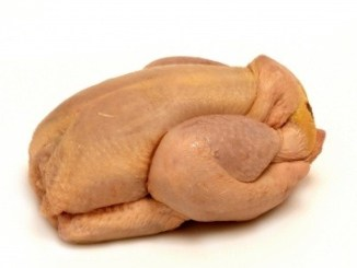 An uncooked chicken on a white background.