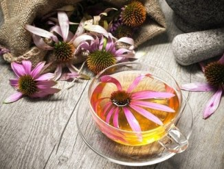 Echinacea in a cup of tea on a wooden table.