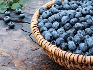 Ripe blueberries in a wicker basket on a stone floor.
