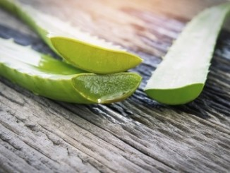 Cut halves of aloe leaves on a wooden table.