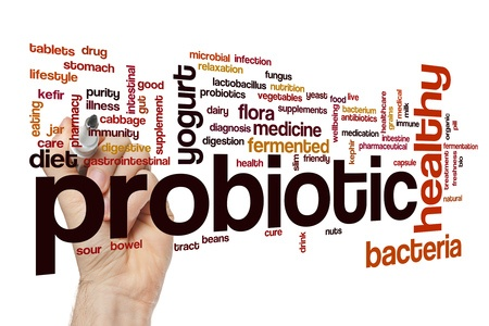 68092306 - probiotic word cloud