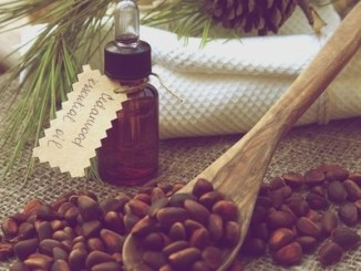 A dropper bottle of cedarwood essential oil. cedarwood nuts in front view