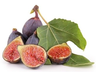 Isolated figs on a white background