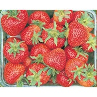 Strawberries in a punnet.