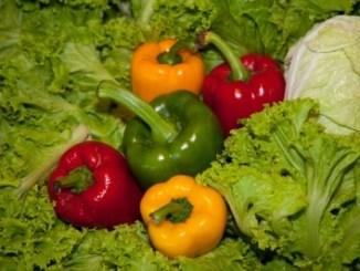 Vegetables on a bed of lettuce