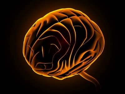 Image of a brain picked out in orange on a black background. View from side and top. alcohol could benefit brain.