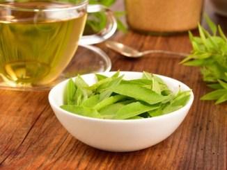 Lemon verbena leaves on a white bowl and verbena tea on wooden table. aloysia citrodora.