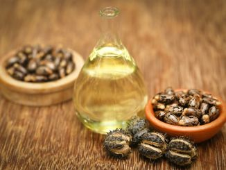 Castor beans and oil in a glass jar