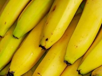 Ripe bananas are the source of banana powder.