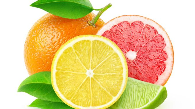 Citrus fruits (lemon, lime, grapefruit, orange) isolated on white, with clipping path. A source of limonoids.
