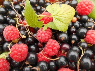 Fruit are wonderful sources of anthocyanins