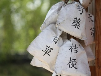 Chinese herbal medicine bags, renshen shouwu, traditional herbal medicine for brain and mental health and cardiovaascular health