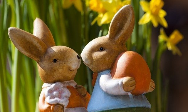 Does one of these bunnies have a vegan Easter egg?