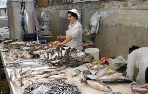 Rijeka fish market - Photo by Barry Williams